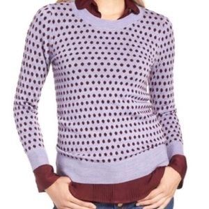 J crew purple polka dot tippi merino wool sweater